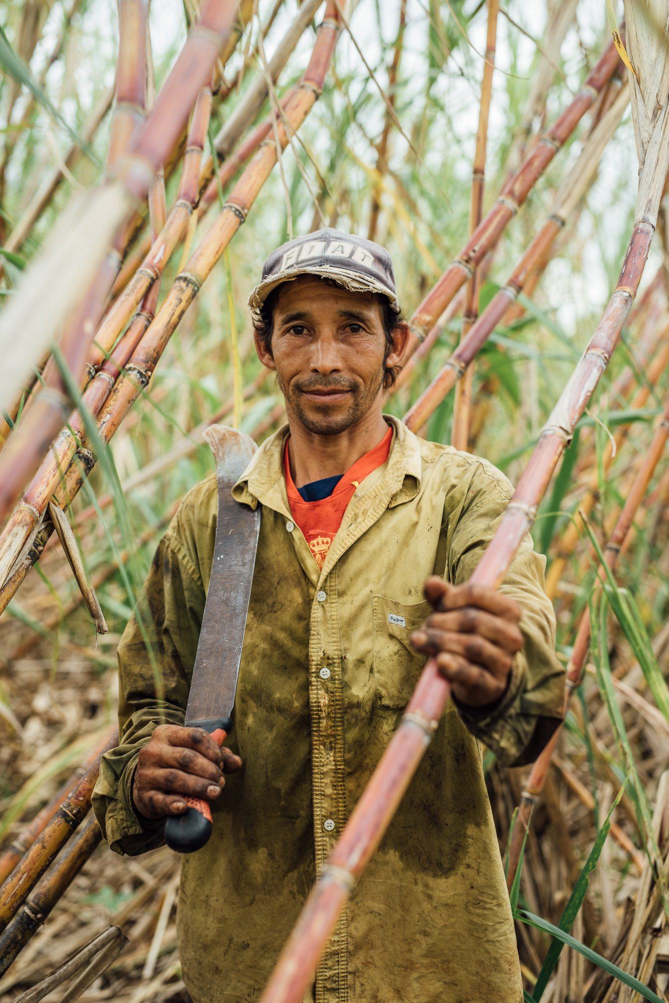 Almost all sugarcane at ASOCAZE is still being cut by hand with machetes.